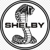 Fotos de Shelby