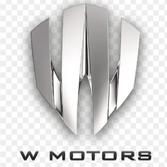 Logo de W Motors