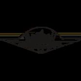 Logo de Wartburg