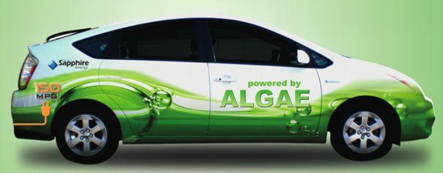 algaeus_toyota-prius