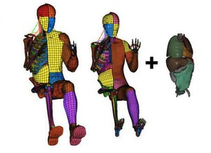 Los nuevos crash-dummies con órganos internos