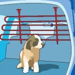 BARRAS: Se adaptan a la altura y anchura del coche, impidiendo que el animal pase a la zona de los pasajeros. Fáciles de instalar y retienen mejor al animal. A veces no aguantan el empuje de un perro grande.