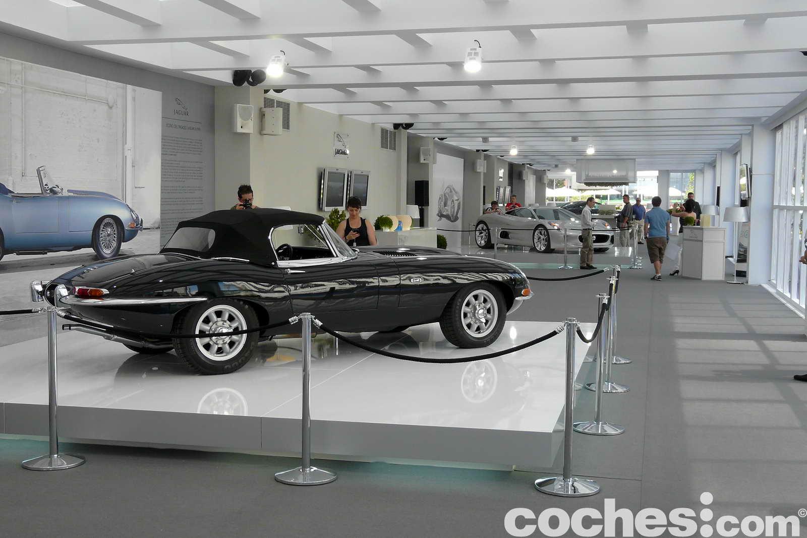 Exposicion_Jaguar_39