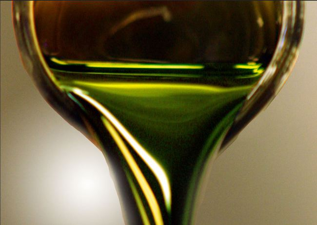 algas_biofuel 3