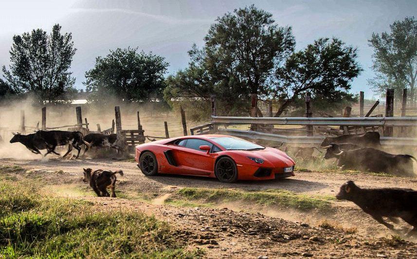 El Lamborghini Aventador Vuelve A Sus Or 237 Genes