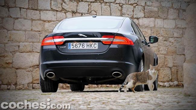 Jaguar_XF_3.0_Diesel_Premium_Luxury_48