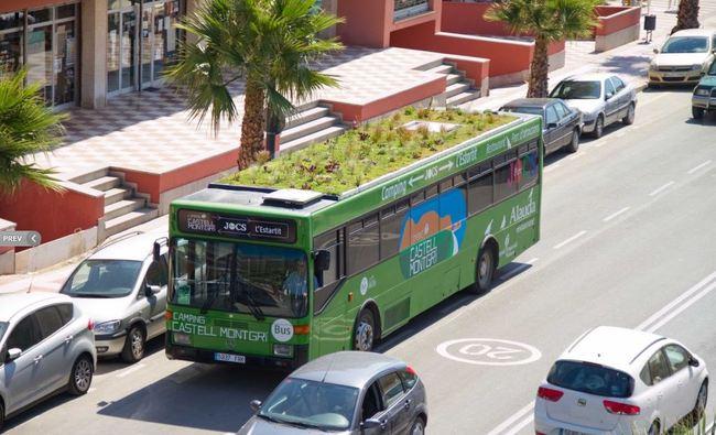 bus cubierta vegetal