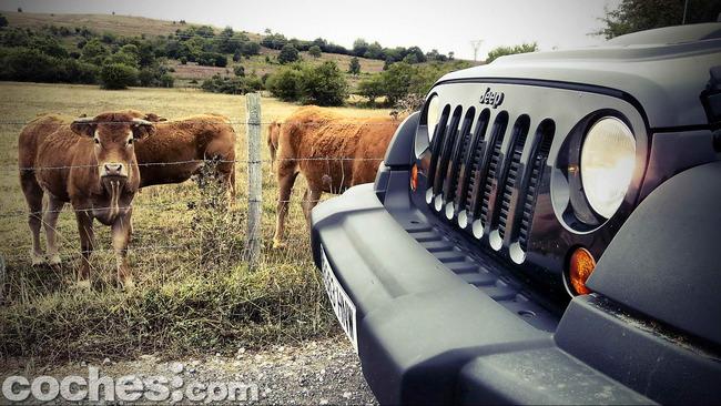 Jeep_Wrangler_Moab_32