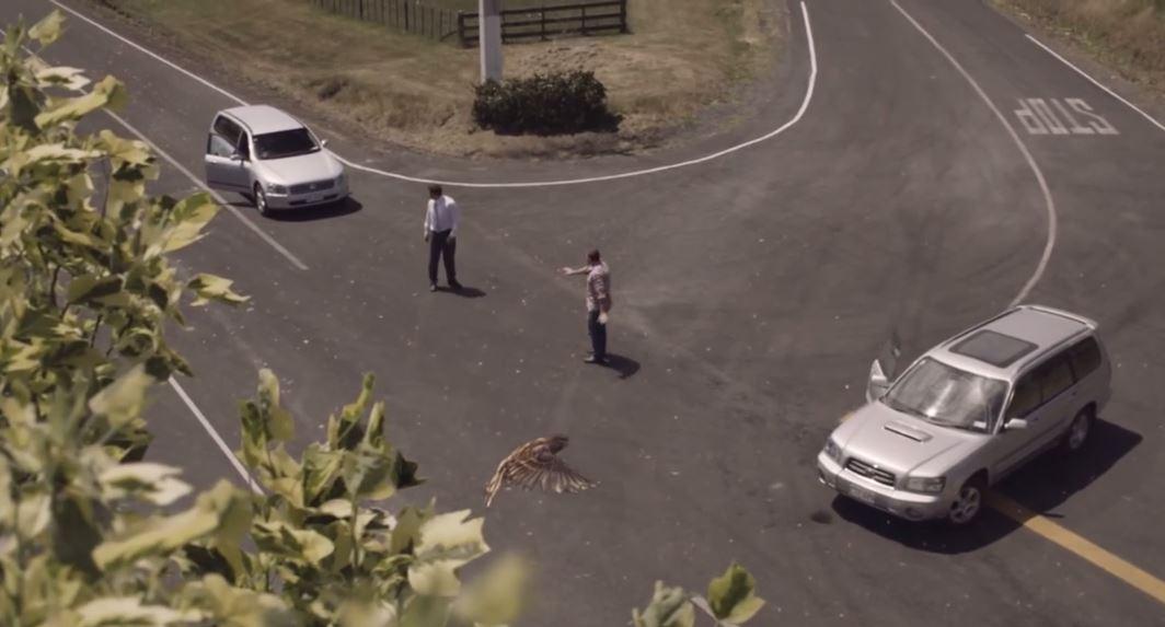 percepcion velocidad anuncio Nueva Zelanda