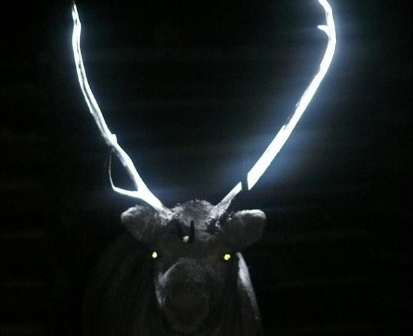 cuernos renos brillan oscuridad