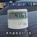 calor_coche_2
