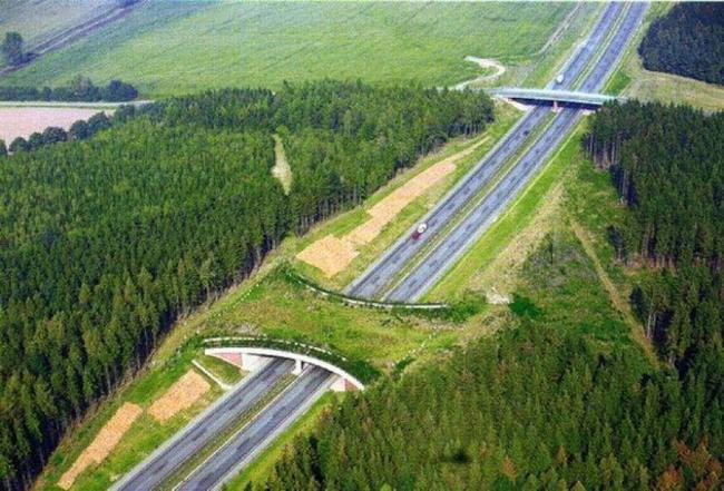 autopiesta a6 austria Eslovaquia