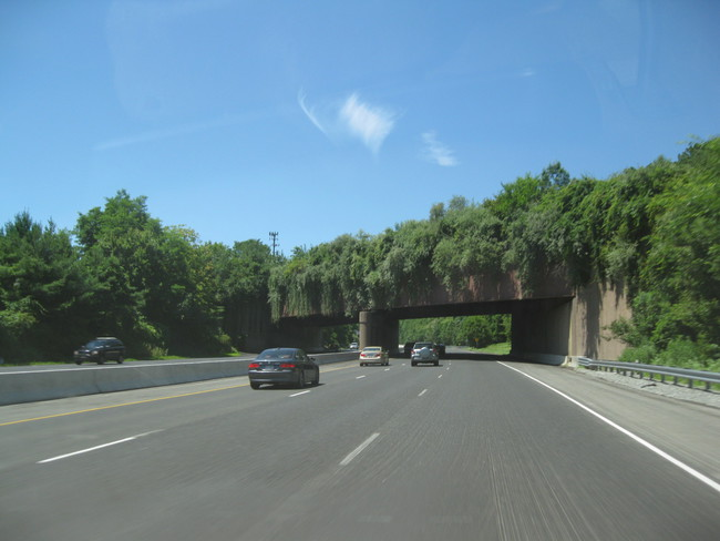 Interstate_78_-_New_Jersey_Watchung_Reservation