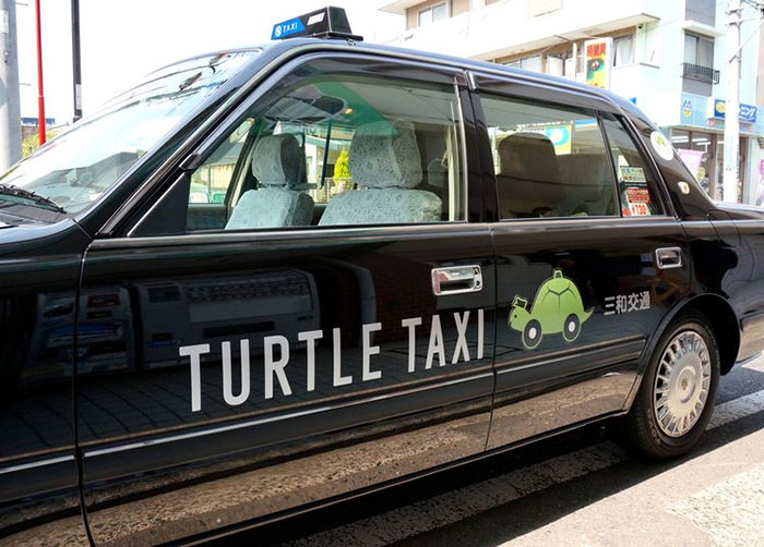 Taxi tortuga 0