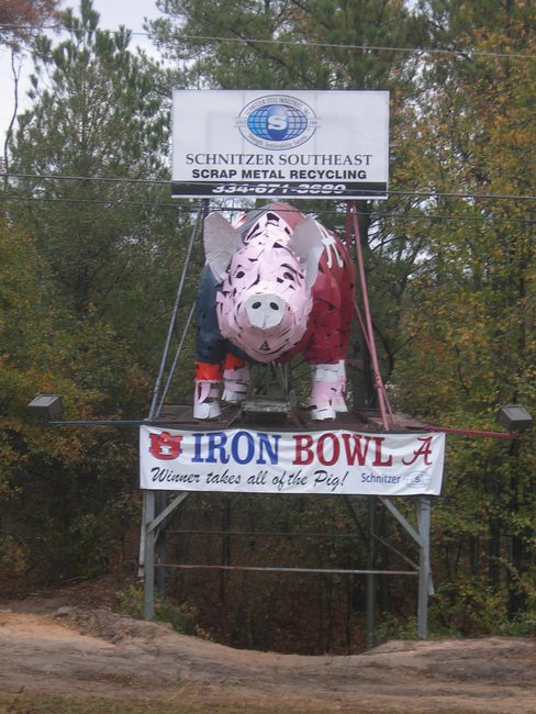 Dothan Hog for the Iron Bowl - Dothan, Alabama