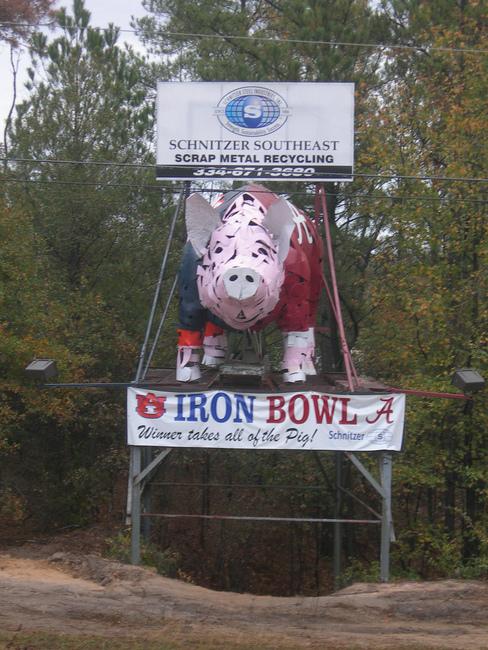 Dothan Hog for the Iron Bowl - Dothan, Alabama