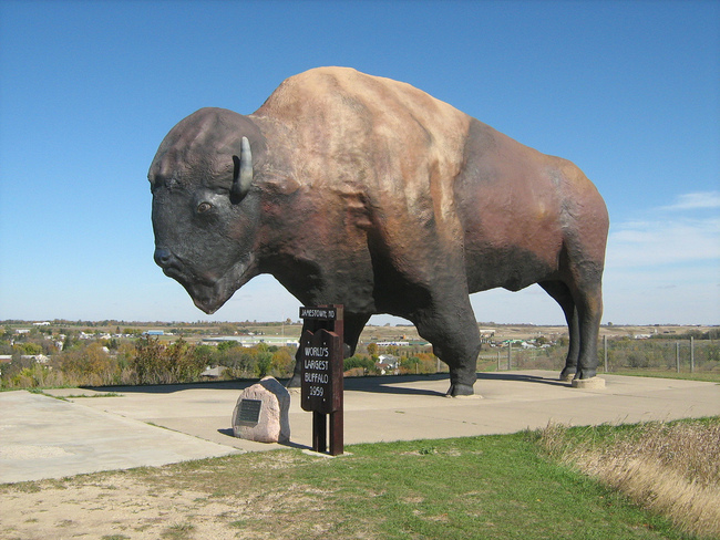 Jamestown Buffalo - Jamestown, North Dakota