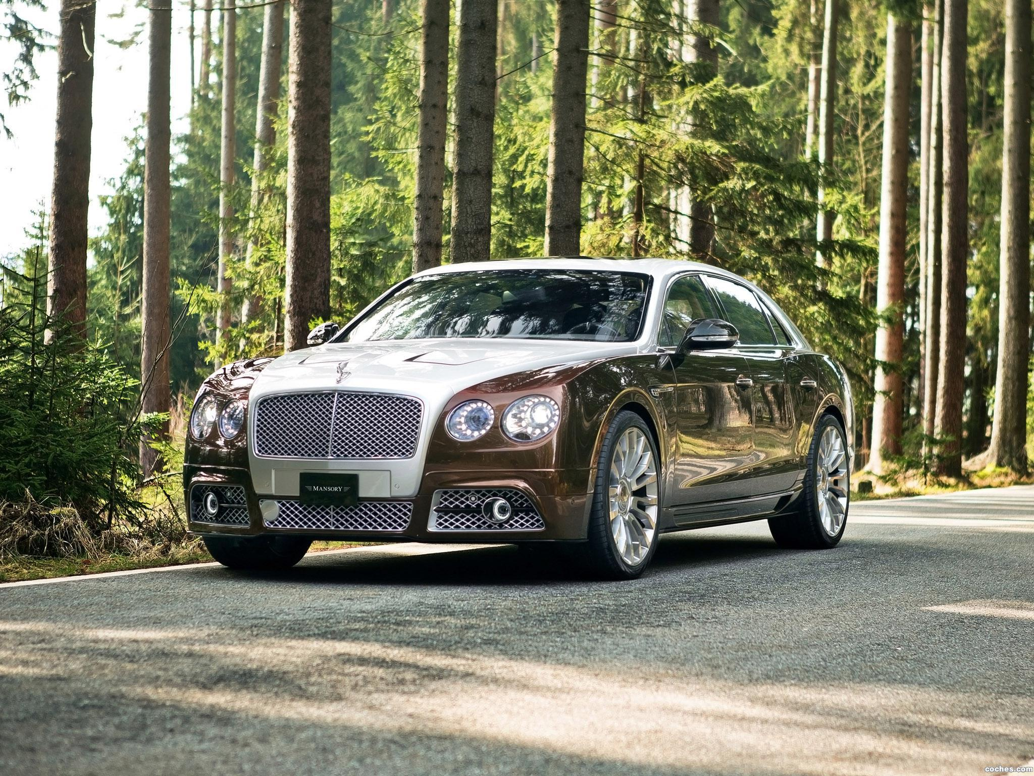 mansory_bentley-continental-flying-spur-2014_r6
