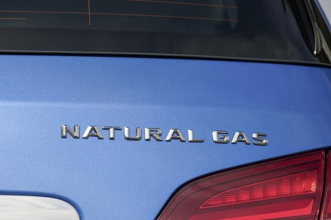 B-Klasse Natural Gas Drive (W 242) 2014