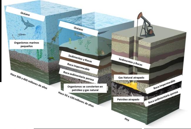 Esquema-de-Formación-de-Petróleo-y-Gas-Natural