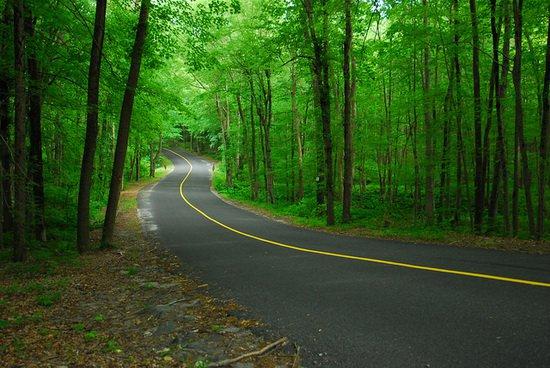 flickr-carreteras-02