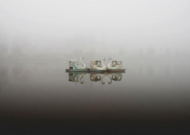 mundo fantasma-flickr