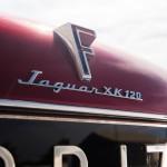 Jaguar XK120 SuperSonic by Ghia 1953 detalle 10.