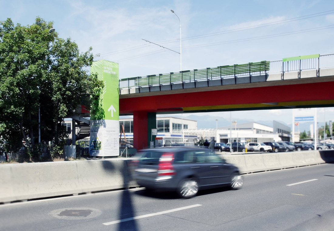 puente-algas (1)