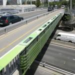 puente-algas (3)