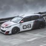 Peugeot 308 Racing Cup 2016 02