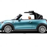 Mini Cooper Cabrio 2016 112
