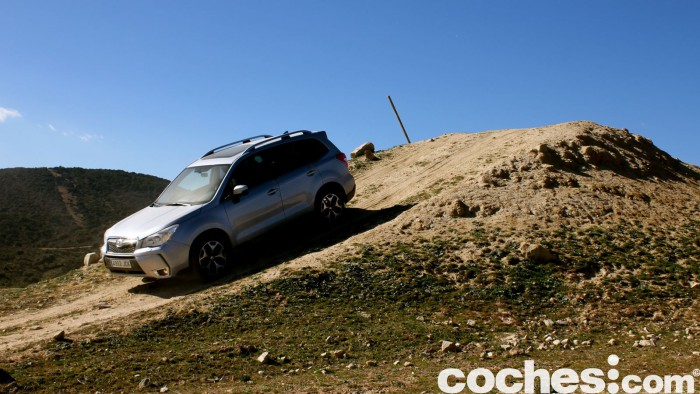 Subaru Forester 2.D Lineartronic 2015 33