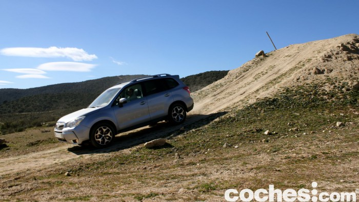Subaru Forester 2.D Lineartronic 2015 37