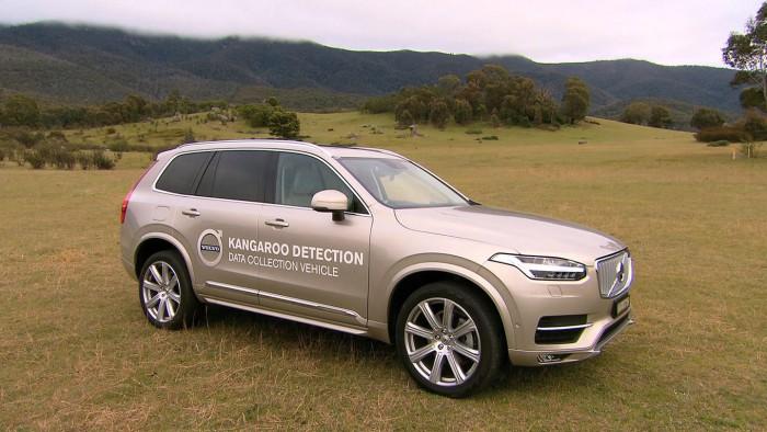 Volvo detecta canguros 02