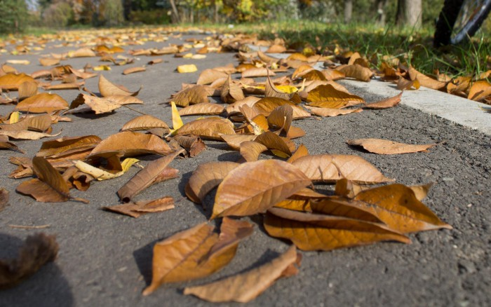 asfalto resbaladizo