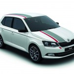 Skoda Fabia Red and Grey 2016