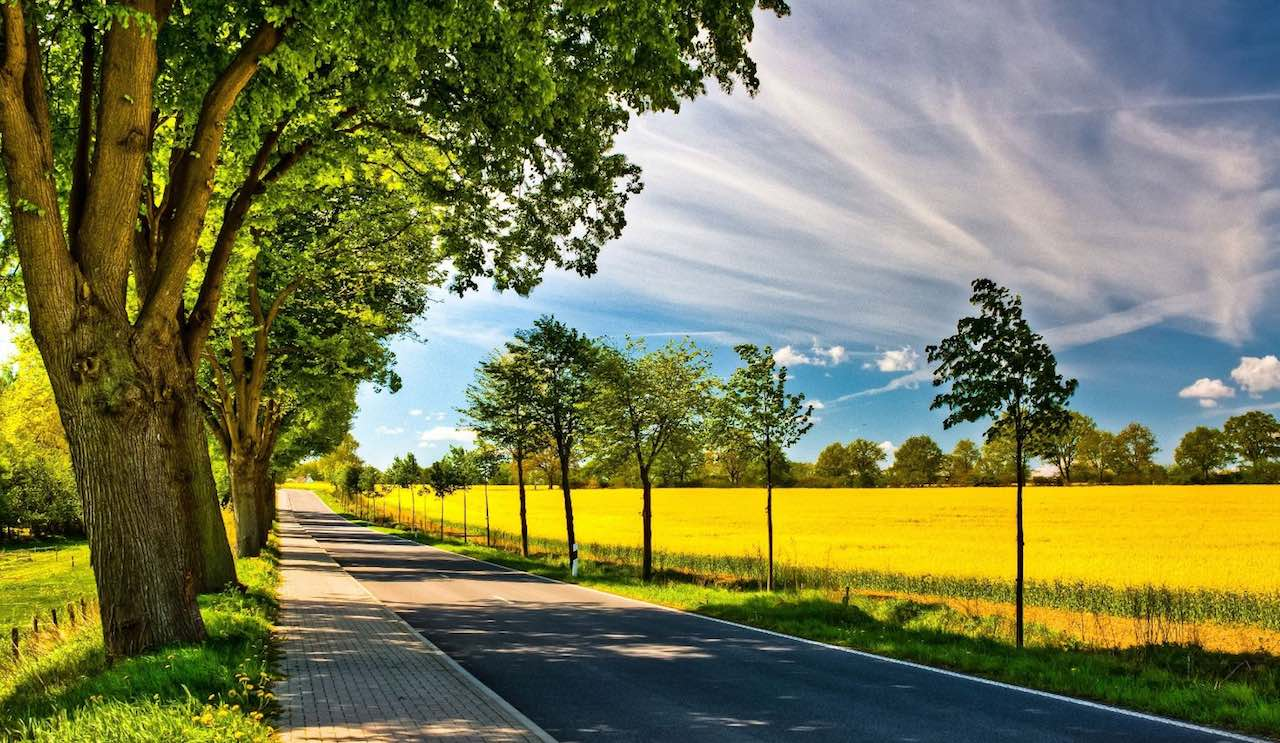 carretera-primavera