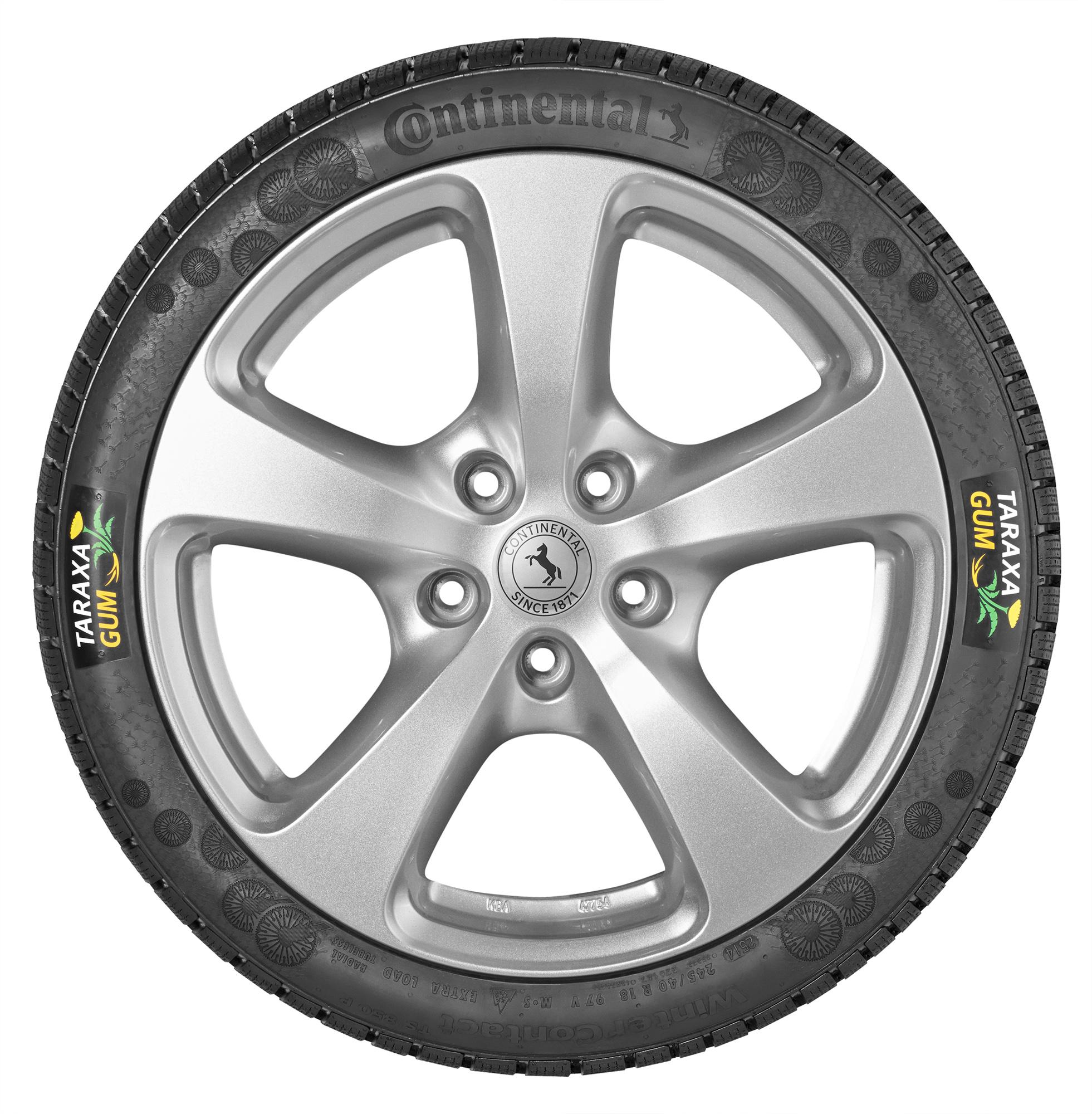neumático taraxagum