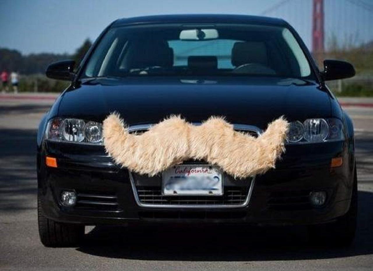 coche-con-bigote