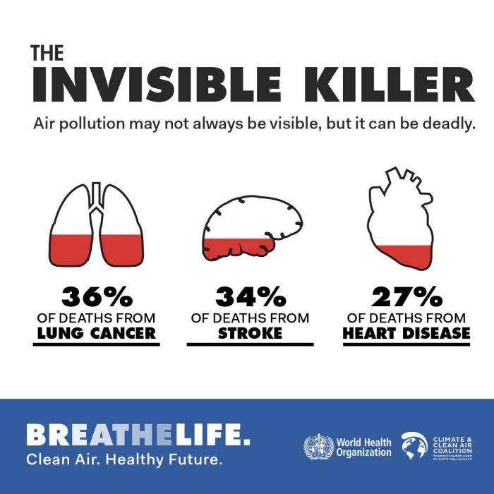 Perjuicio de la polución del aire