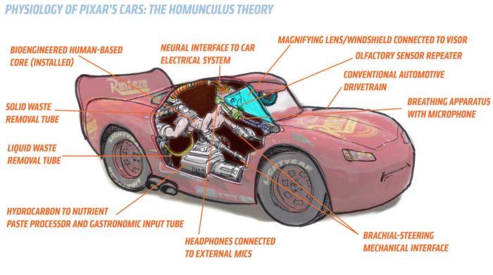 fisiología de los humanos en cars