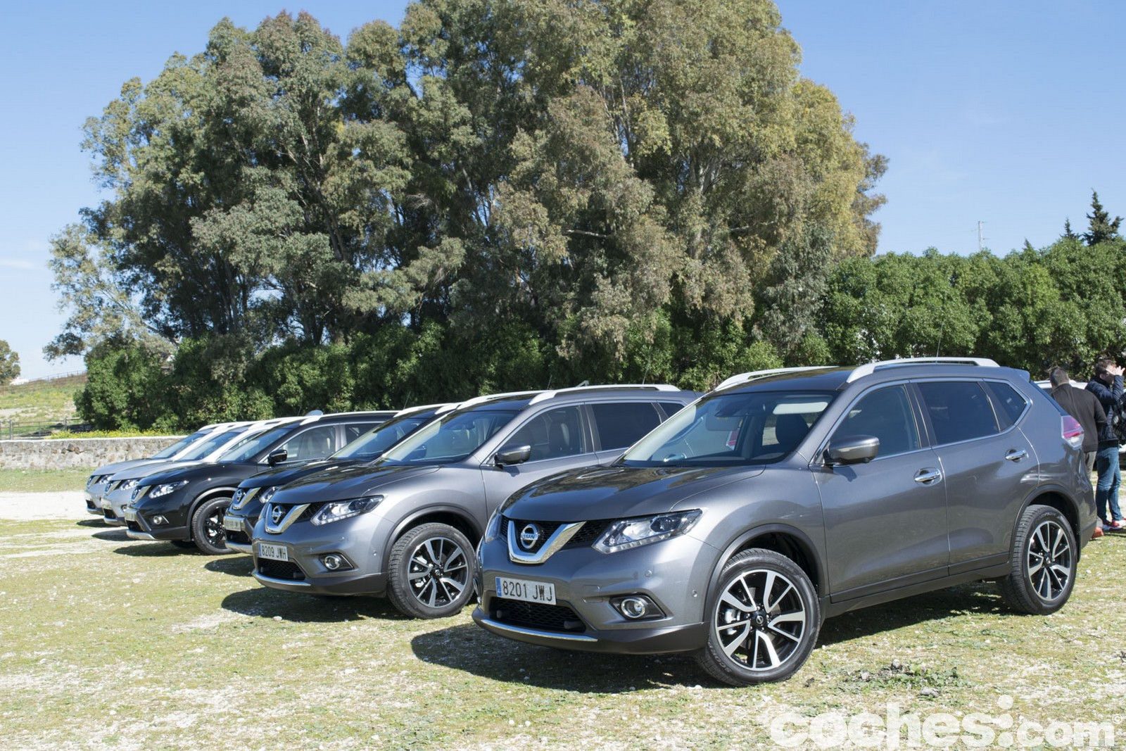 Nissan X-Trail Crossover Domination