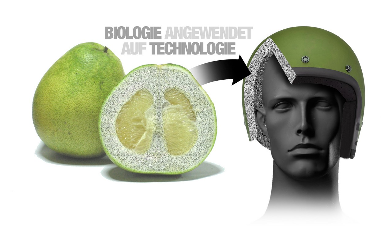 bmw-protecciones-fruta 1