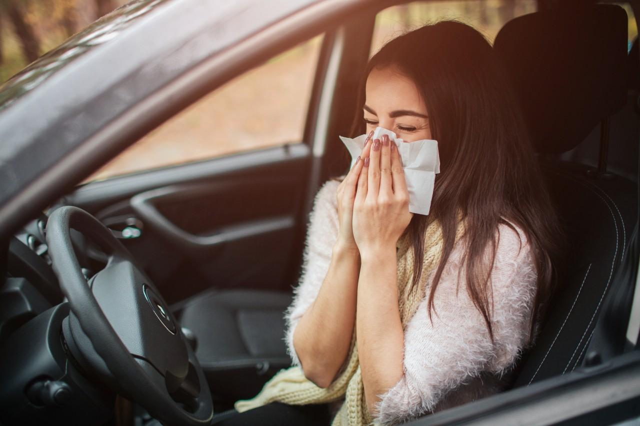 alergia-coche