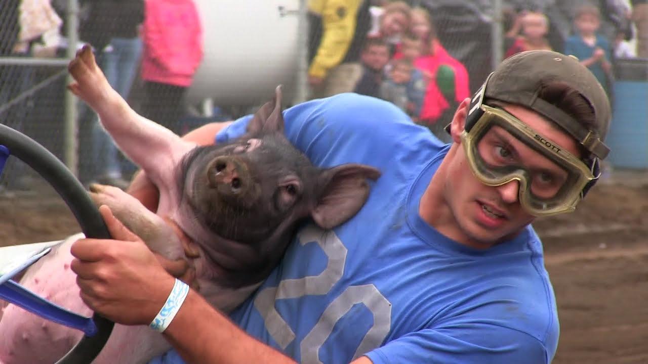Pig N Ford carrera