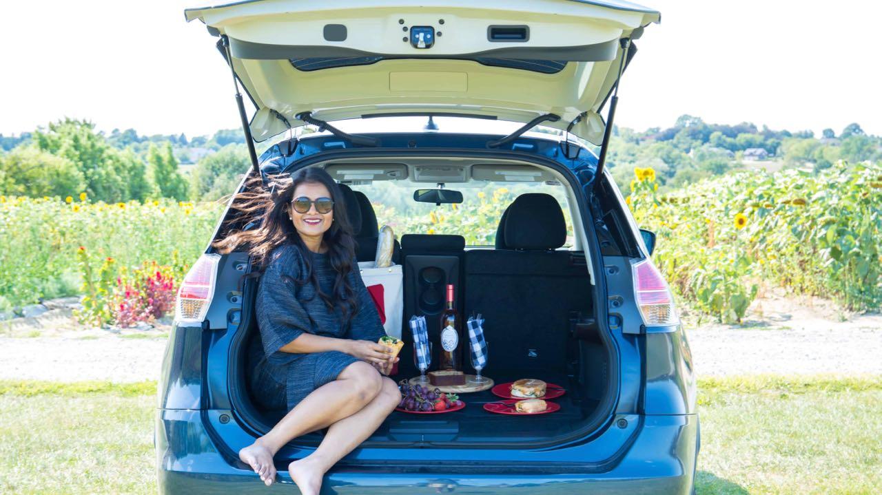 coche picnic maletero – 2