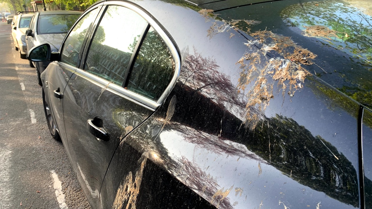 HOW ARTIFICIAL BIRD POOP KEEPS YOUR PAINTWORK SAFE IN THE REAL WORLD